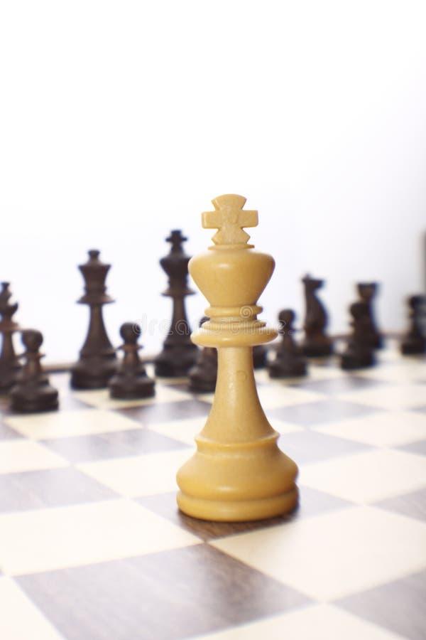 Einsamer weißer König stockbild