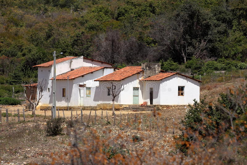 Einsames Dorf Queixo Dantas im Caatinga von Brasilien stockfotografie