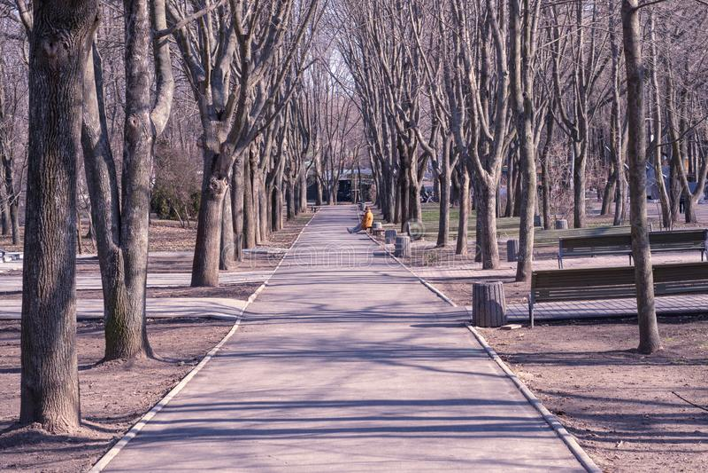 Einsames Mädchen, das auf einer Bank im Park sitzt lizenzfreie stockbilder