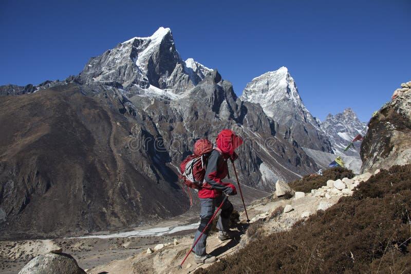 Einsamkeitsdamentrekking in der Himalajaregion stockfotos