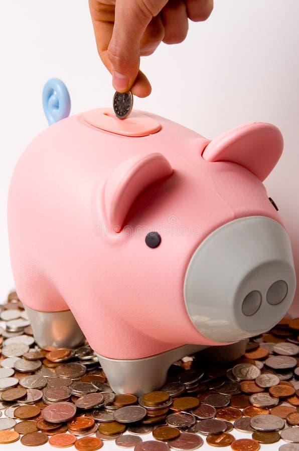 Einsetzen des Geldes in die Piggy Querneigung stockbild