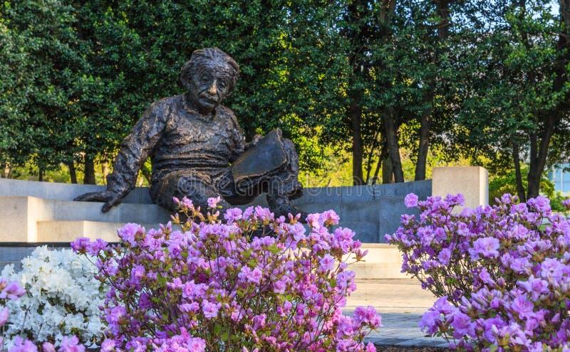 Einstein minnes- nationell akademi av vetenskaper royaltyfria foton