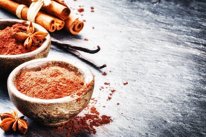 Einstellung mit Kakaopulver, Vanille und Zimtstangen lizenzfreie stockfotografie