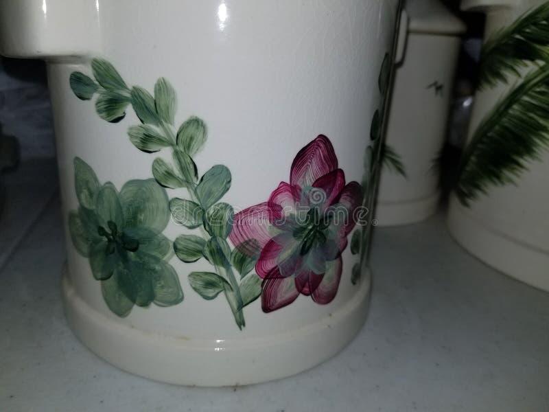Eintakt-Succulents-Kanister lizenzfreies stockfoto