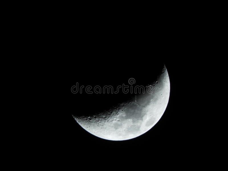 Einwachsen von Crescent Moon Phase im Vorfrühling lizenzfreies stockbild