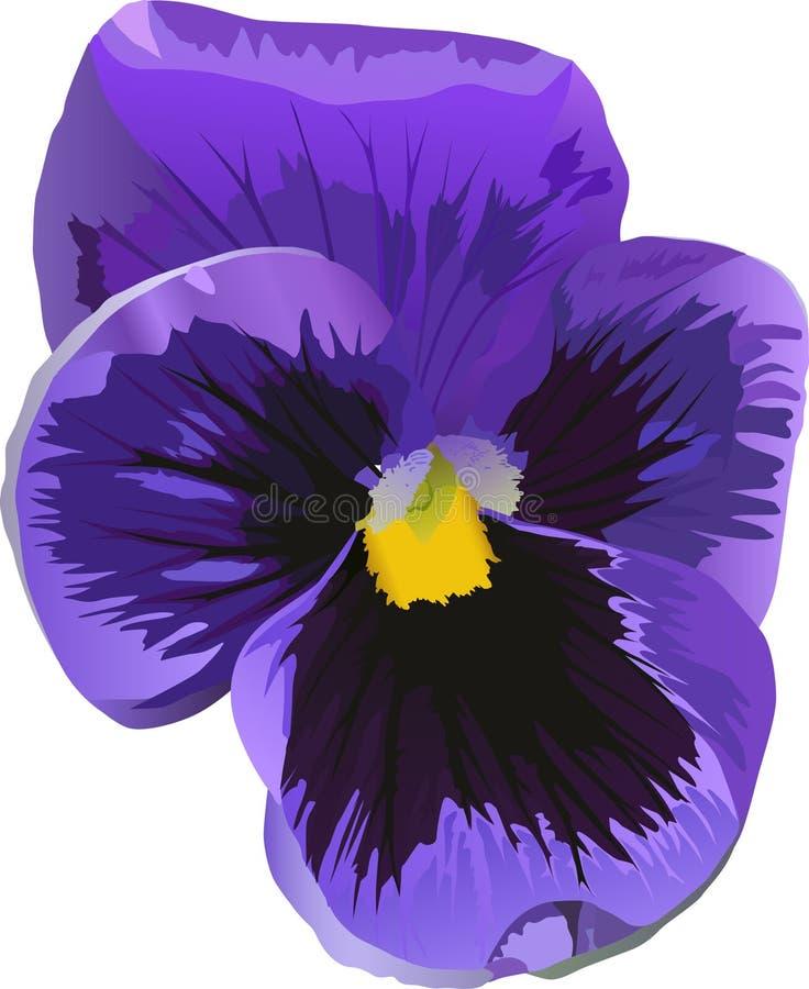 Einzelne blaue Blume auf Weiß vektor abbildung