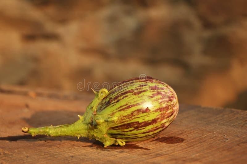 Einzelne Frucht der Aubergine stockbild
