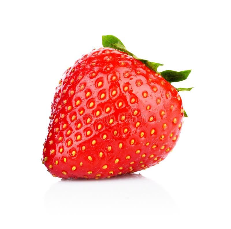 Einzelne ganze Erdbeere lokalisiert stockfotos