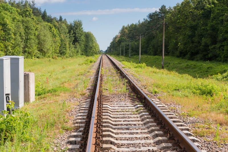 Einzelne moderne Bahnstrecken im Wald stockbild