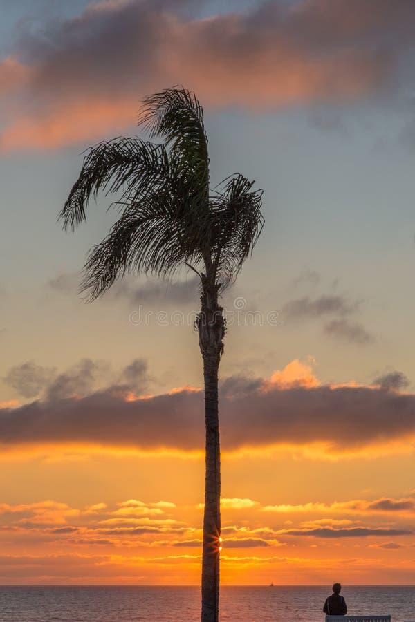 Einzelne Palme bei Sonnenuntergang mit einer Person, die heraus zum Meer schaut lizenzfreie stockbilder
