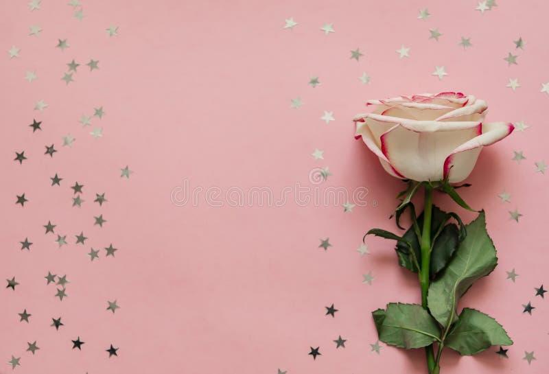 Einzelne rosafarbene Blume mit ganz eigenhändig geschrieben Sternen auf rosa Hintergrund mit Platz für Text stockfotos