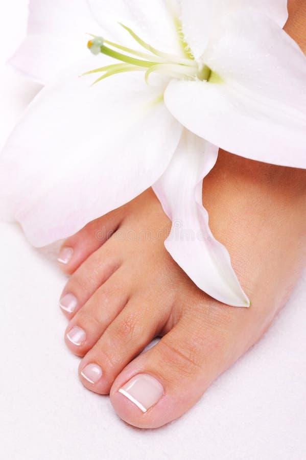 Einzelne weibliche Füße mit Blume lizenzfreie stockfotografie