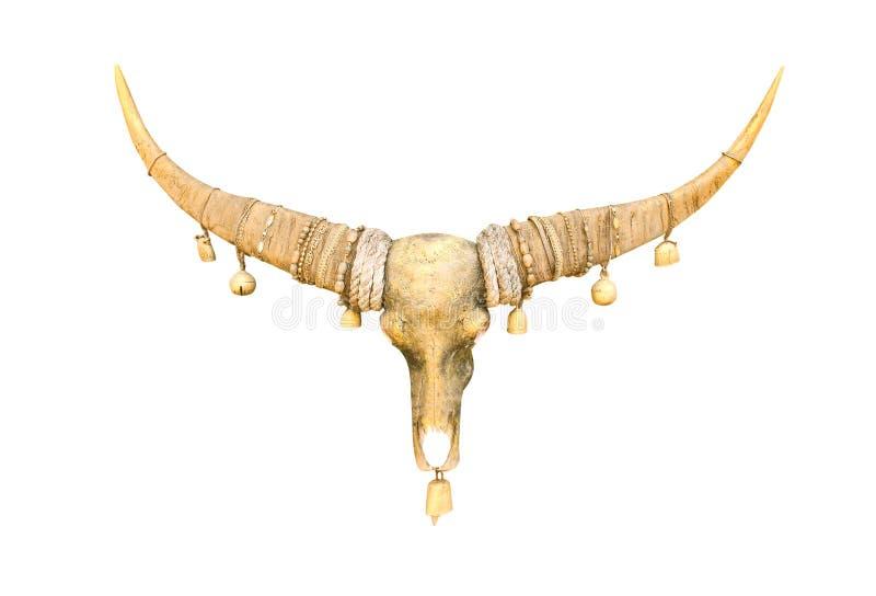 Einzelner enormer Goldbüffelschädel dekorativ mit den Messingglocken der kleinen Farbe, die an den langen Hörnern lokalisiert auf lizenzfreies stockfoto