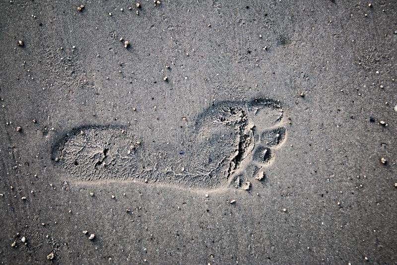 Einzelner strukturierter Abdruck im Sand stockbilder