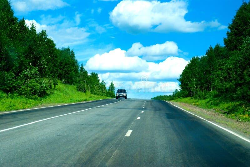 Einzelnes Auto auf Geschwindigkeitsweise durch wilden Wald stockfoto