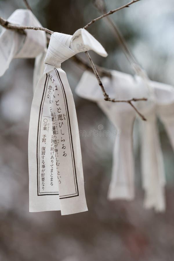 Einzelnes Gebetspapier geknotet um einen Baumast lizenzfreies stockbild