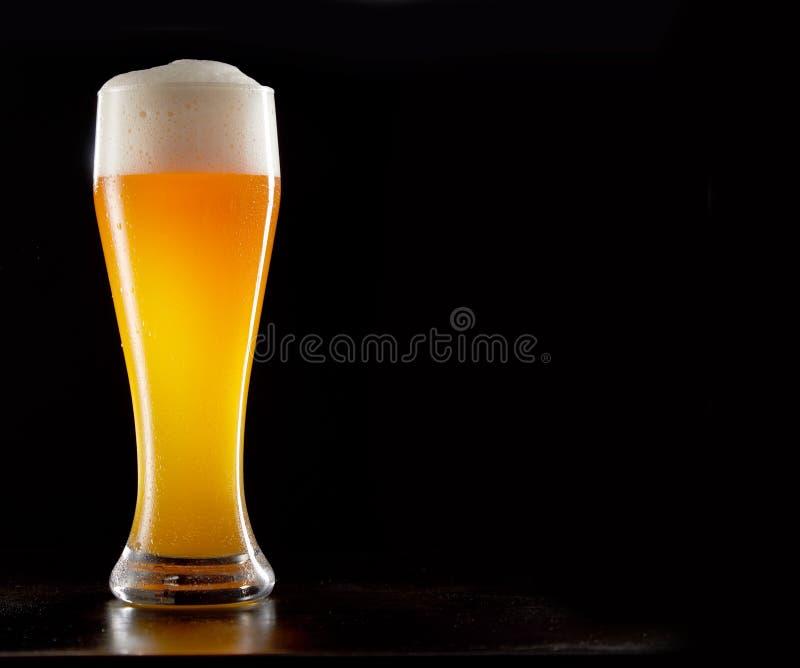 Einzelnes hohes stilvolles Glas gekühltes schaumiges Weizenbier stockbild