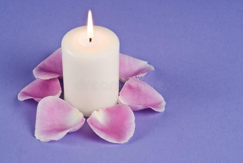 Einzelnes Kerzenlicht und rosafarbene Rosen-Pedale stockfotografie