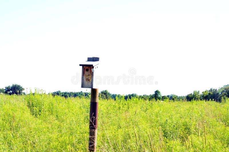 Einzelnes Vogelhaus befestigte zum Pfosten in der Mitte des Feldes stockfotos