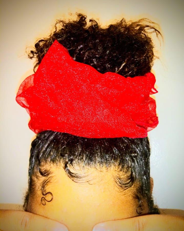 Einzigartiger roter Tulle-Haar-Schönheitszusatz stockfotografie