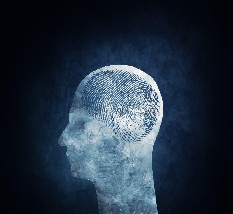 Einzigartiges Gehirn lizenzfreies stockbild