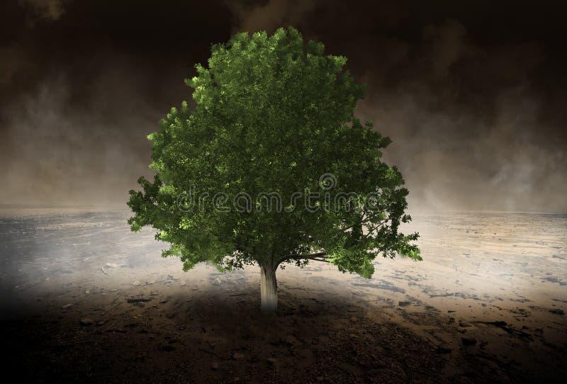 Einziger Baum, Umwelt, Evironmentalist, Wüste stockfotografie