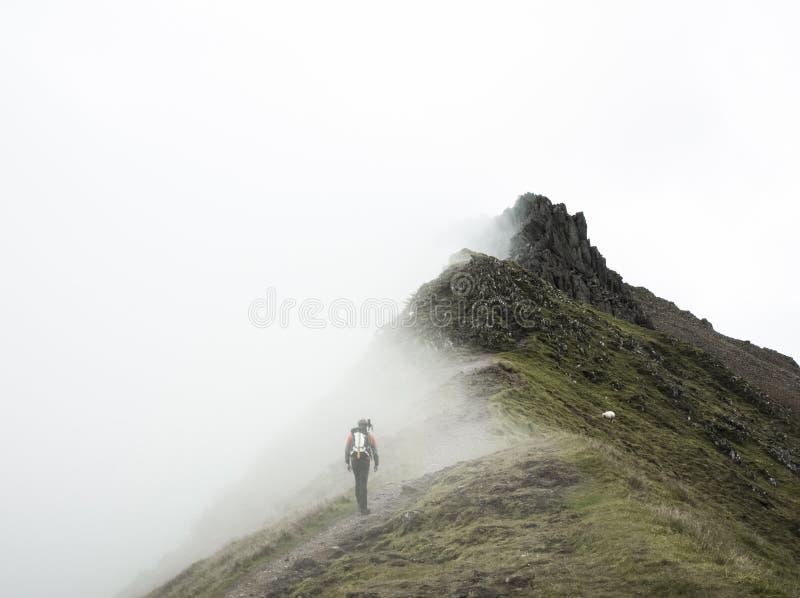 Einziger Wanderer auf Berg lizenzfreies stockfoto
