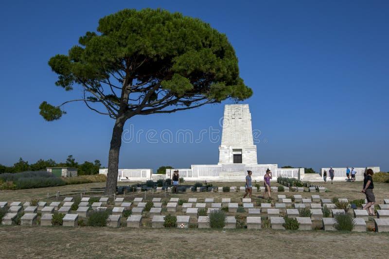 Einziges Kiefern-Denkmal in der Türkei stockfoto