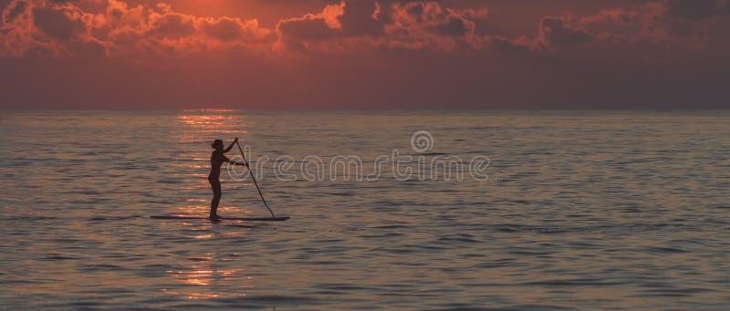 Einziges weibliches paddleboarder stockfotos