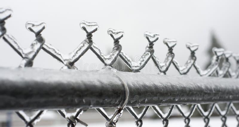 Eis auf Kettengliedzaun stockbild