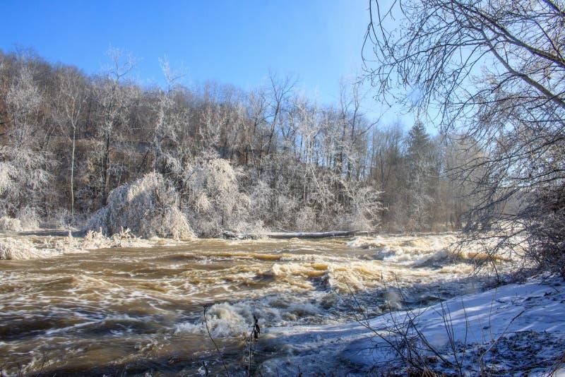 Eis-bedeckte Bäume auf den Banken des Housatonic-Flusses stockbild