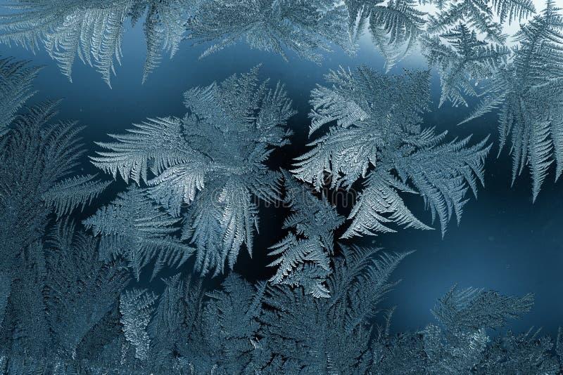 Eis-Blumen - Zusammenfassung auf Glasplatte lizenzfreie stockbilder