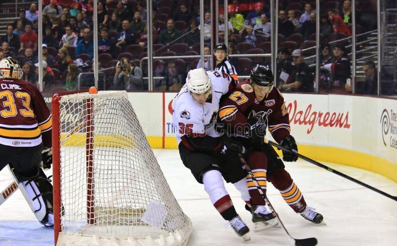 Eis-Hockeyspieler lizenzfreie stockbilder