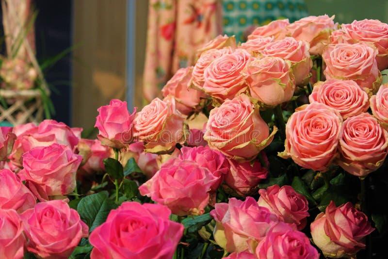 Eis porque nós amamos rosas fotos de stock royalty free