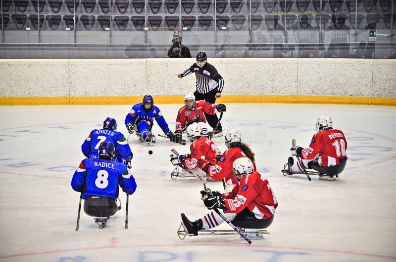 Eis-Schlitten-Hockey stockfoto