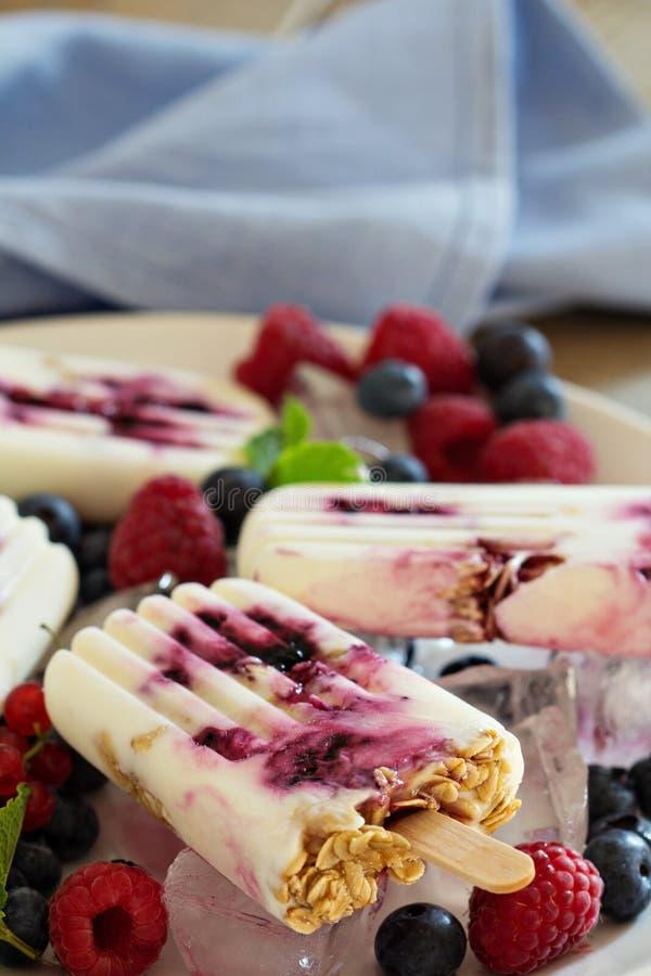 Eis am Stiel des gefrorenen Joghurts mit Hafern und Stau lizenzfreie stockfotos