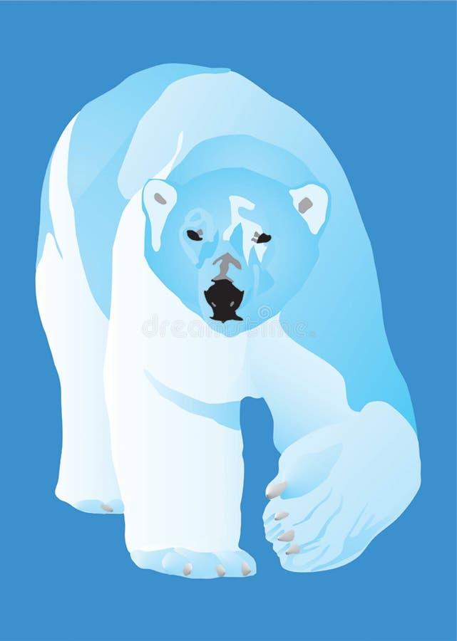Eisbär Ein Gefährlicher Fleischfresser Lizenzfreies Stockfoto