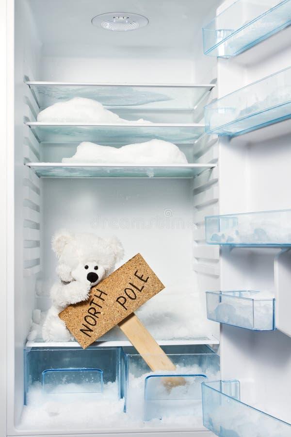Eisbär im Kühlraum mit Nordpol-Zeichen. stockfoto