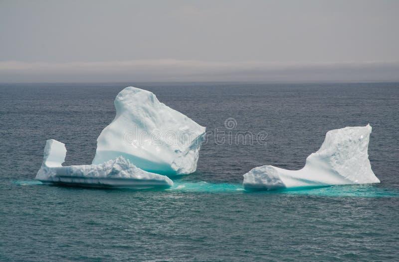 Eisberg stockfotografie
