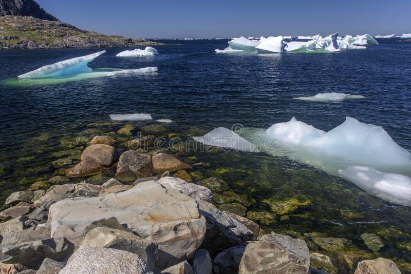 Eisberge in der ruhigen Bucht auf Fogo-Insel lizenzfreie stockfotografie