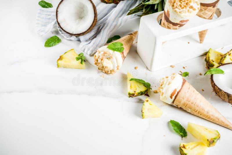 Eiscreme der tropischen Frucht stockfoto