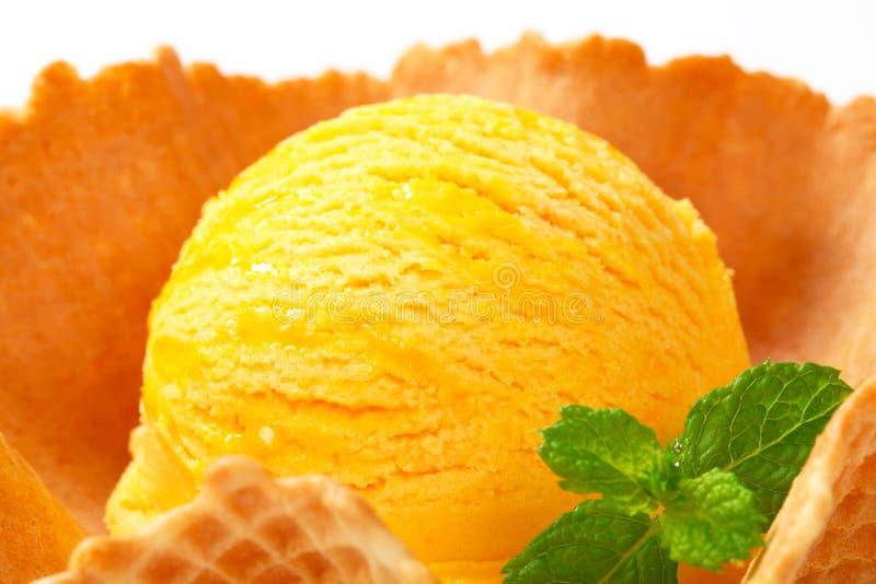 Eiscreme in einer Oblateschüssel lizenzfreies stockfoto