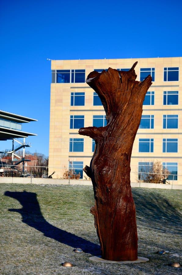 Eisen-Baum-Stamm stockbild