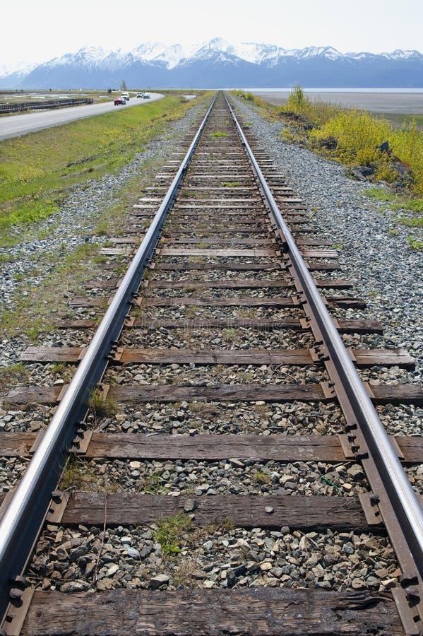 Eisenbahnlinie in der Wildnis lizenzfreie stockfotos