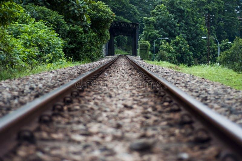 Eisenbahnlinie des Ungezwungenheit lizenzfreie stockfotos