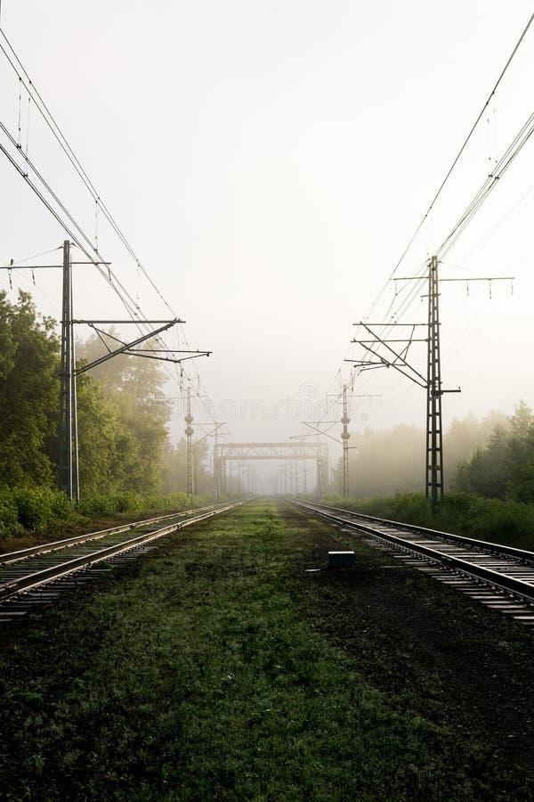 Eisenbahnlinien, die in den Nebel einsteigen lizenzfreie stockfotos