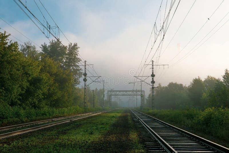 Eisenbahnlinien, die in den Nebel einsteigen lizenzfreies stockbild