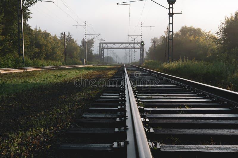 Eisenbahnlinien, die in den Nebel einsteigen stockfotografie