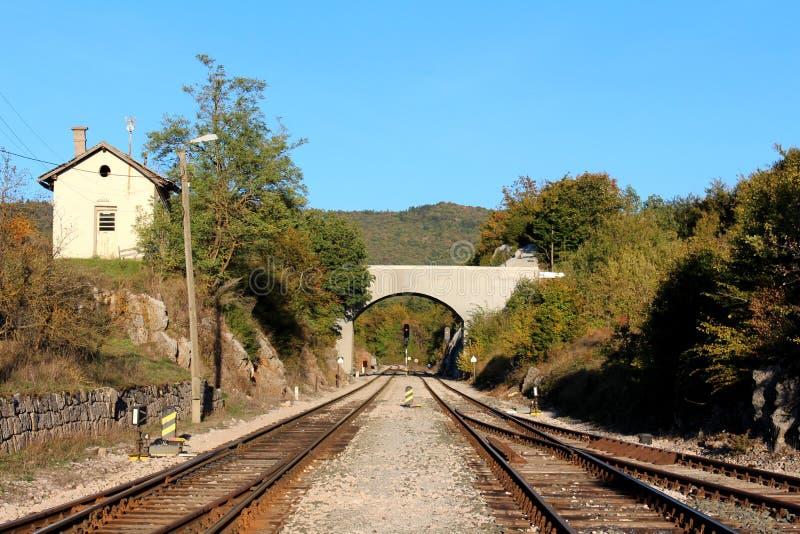 Eisenbahnlinien, die unter die Betonbrücke umgeben mit Kies- und Weichenmechanismus mit Signallichtern und dichten Bäumen gehen lizenzfreie stockbilder