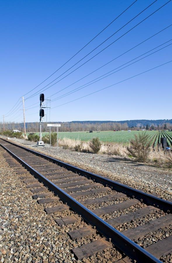 Eisenbahnspuren im Land stockbild